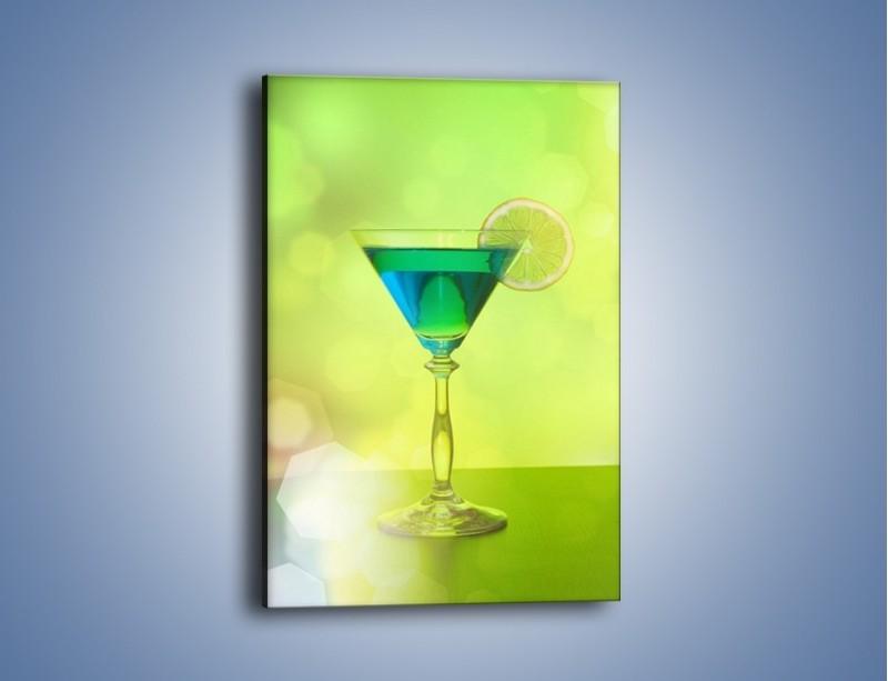 Obraz na płótnie – Drink zatopiony w oceanie – jednoczęściowy prostokątny pionowy JN559
