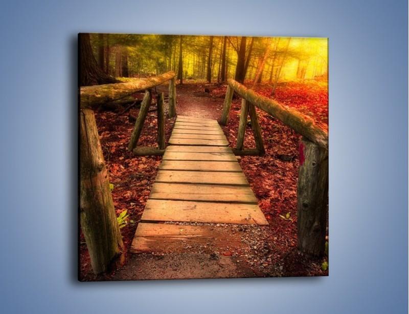 Obraz na płótnie – Krótkie przejście przez las – jednoczęściowy kwadratowy KN1330A