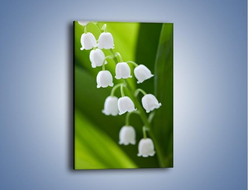 Obraz na płótnie – Gałązka rozwiniętych konwalii z liściem – jednoczęściowy prostokątny pionowy K027