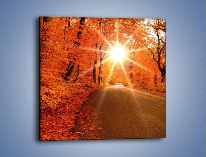 Obraz na płótnie – Droga pełna słońca – jednoczęściowy kwadratowy KN160