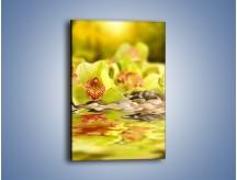 Obraz na płótnie – Wodne odbicie storczyków – jednoczęściowy prostokątny pionowy K129