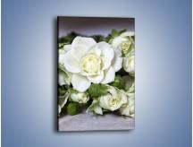 Obraz na płótnie – Białe róże na stole – jednoczęściowy prostokątny pionowy K131