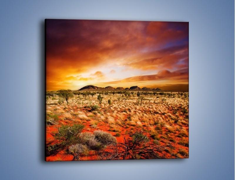 Obraz na płótnie – Oaza w kolorach ognistej ziemi – jednoczęściowy kwadratowy KN192