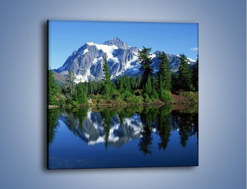Obraz na płótnie – Zimowe pozostałości w górach – jednoczęściowy kwadratowy KN225