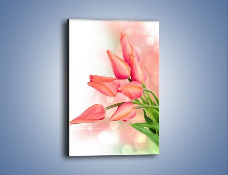 Obraz na płótnie – Dobrze zakręcone tulipany – jednoczęściowy prostokątny pionowy K265