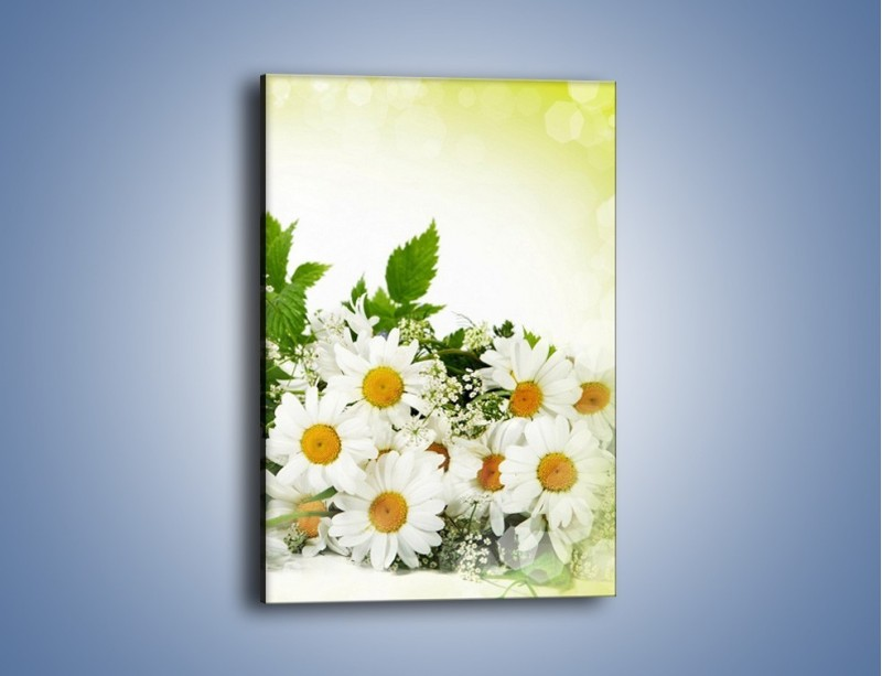 Obraz na płótnie – Delikatna wiązanka dla babci – jednoczęściowy prostokątny pionowy K266