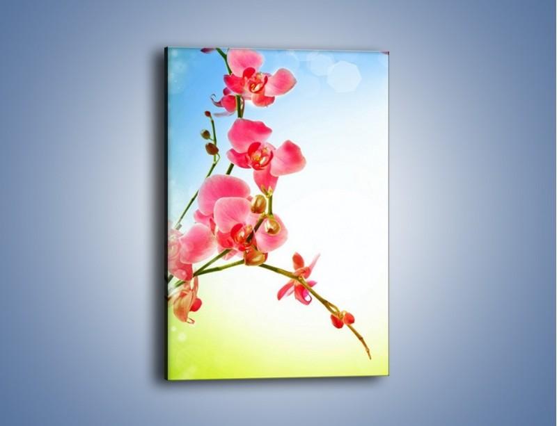 Obraz na płótnie – Akcent kwiatowy – jednoczęściowy prostokątny pionowy K268