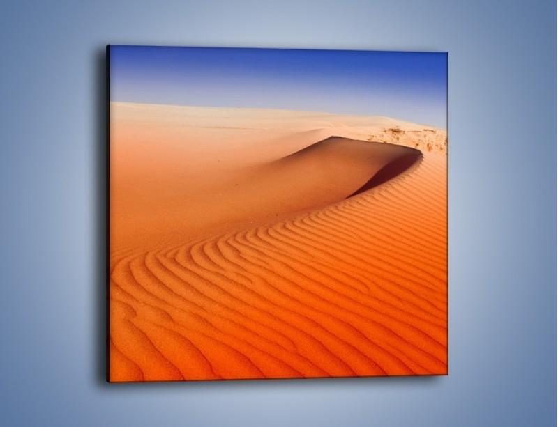 Obraz na płótnie – Pustynny żar – jednoczęściowy kwadratowy KN305