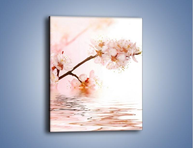 Obraz na płótnie – Blask kwiatów jabłoni – jednoczęściowy prostokątny pionowy K569