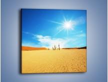 Obraz na płótnie – Błękit nieba i słońce w ziemi – jednoczęściowy kwadratowy KN331