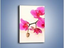 Obraz na płótnie – Pączek w towarzystwie kwiatów – jednoczęściowy prostokątny pionowy K651