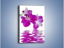 Obraz na płótnie – Rozwinięty kwiat w wodnym odbiciu – jednoczęściowy prostokątny pionowy K673
