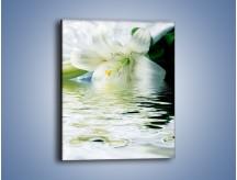 Obraz na płótnie – Czystość zachowana w lilii – jednoczęściowy prostokątny pionowy K675