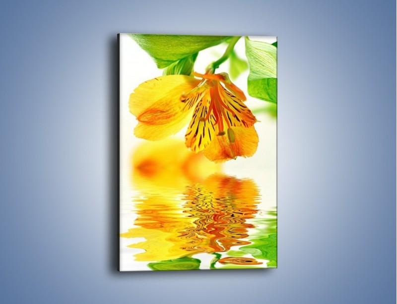 Obraz na płótnie – Ja kwiat i moje odbicie – jednoczęściowy prostokątny pionowy K676