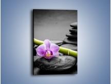 Obraz na płótnie – Bambus czy storczyk – jednoczęściowy prostokątny pionowy K686