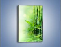 Obraz na płótnie – Bambusowe łodygi w roli głównej – jednoczęściowy prostokątny pionowy K704