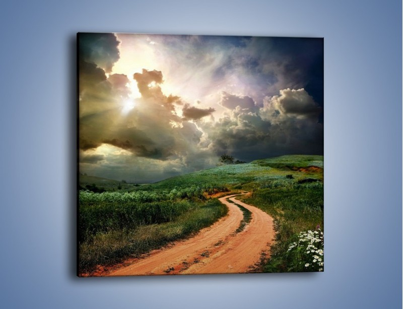 Obraz na płótnie – Krętą ścieżką przez łąkę – jednoczęściowy kwadratowy KN468