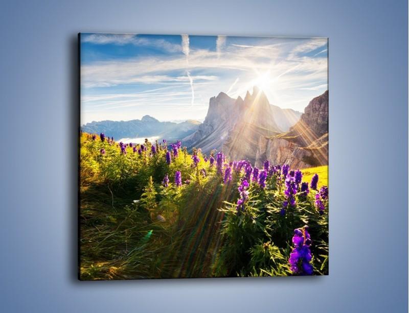 Obraz na płótnie – Góry w poświacie słońca – jednoczęściowy kwadratowy KN502