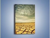 Obraz na płótnie – Ciemne chmury nad popękaną ziemią – jednoczęściowy prostokątny pionowy KN025