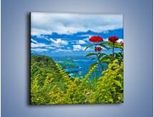 Obraz na płótnie – Bordowe kwiaty w górskim krajobrazie – jednoczęściowy kwadratowy KN561