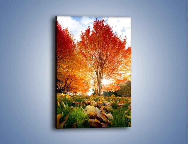 Obraz na płótnie – Jesień w parku – jednoczęściowy prostokątny pionowy KN073