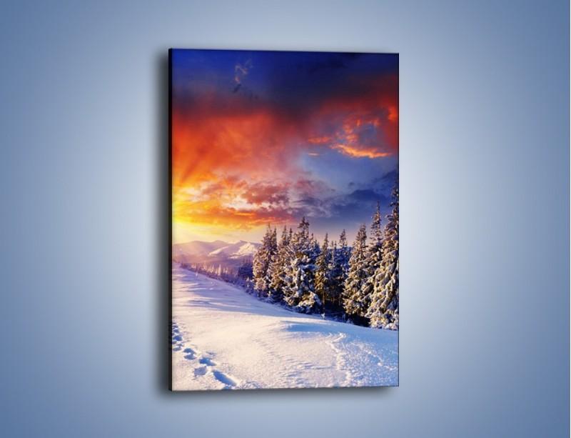 Obraz na płótnie – Urok zimowej pary – jednoczęściowy prostokątny pionowy KN098