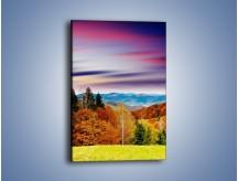 Obraz na płótnie – Drzewa w kolorach jesieni – jednoczęściowy prostokątny pionowy KN099