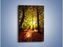 Obraz na płótnie – Dywan z usypanych liści – jednoczęściowy prostokątny pionowy KN109
