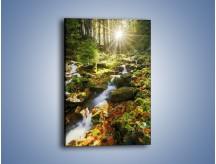 Obraz na płótnie – Lekko zmoczone jesienne liście – jednoczęściowy prostokątny pionowy KN1100