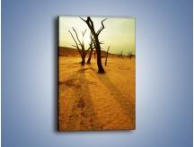 Obraz na płótnie – Drzewa bez niczego – jednoczęściowy prostokątny pionowy KN111