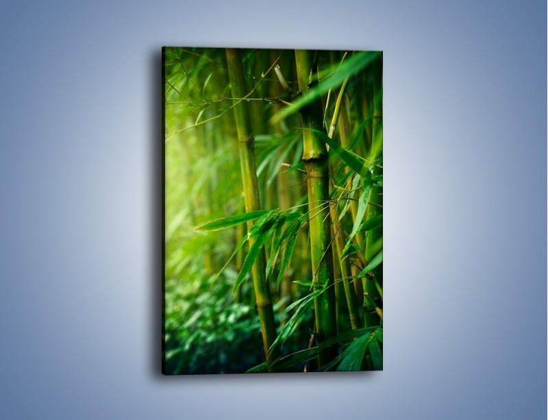 Obraz na płótnie – Bambus w roli głównej – jednoczęściowy prostokątny pionowy KN1202A