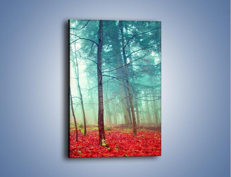 Obraz na płótnie – Drzewka na czerwonym dywanie – jednoczęściowy prostokątny pionowy KN1222A