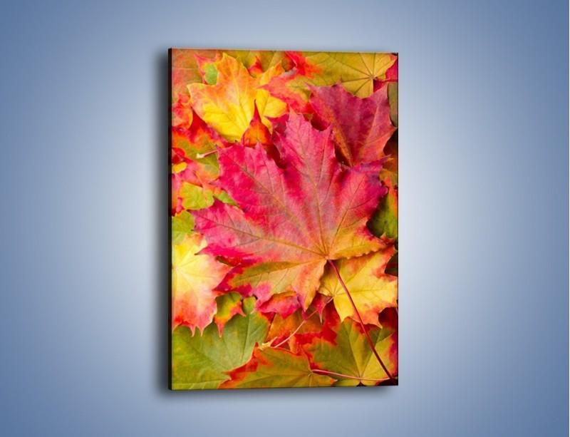 Obraz na płótnie – Jesień w liściach – jednoczęściowy prostokątny pionowy KN131