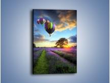 Obraz na płótnie – Lot balonem nad lawendą – jednoczęściowy prostokątny pionowy KN1338A