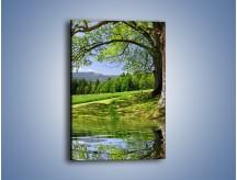 Obraz na płótnie – Krajobraz pełen wiosennego spokoju – jednoczęściowy prostokątny pionowy KN280
