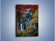 Obraz na płótnie – Leśne okienko na wodospad – jednoczęściowy prostokątny pionowy KN298