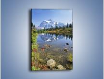 Obraz na płótnie – Górski łagodny potok – jednoczęściowy prostokątny pionowy KN386