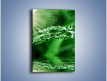 Obraz na płótnie – Liść w wodnym stroju – jednoczęściowy prostokątny pionowy KN410