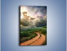 Obraz na płótnie – Krętą ścieżką przez łąkę – jednoczęściowy prostokątny pionowy KN468
