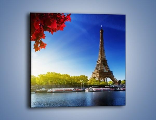 Obraz na płótnie – Wieża Eiffla w piękny dzień – jednoczęściowy kwadratowy AM373