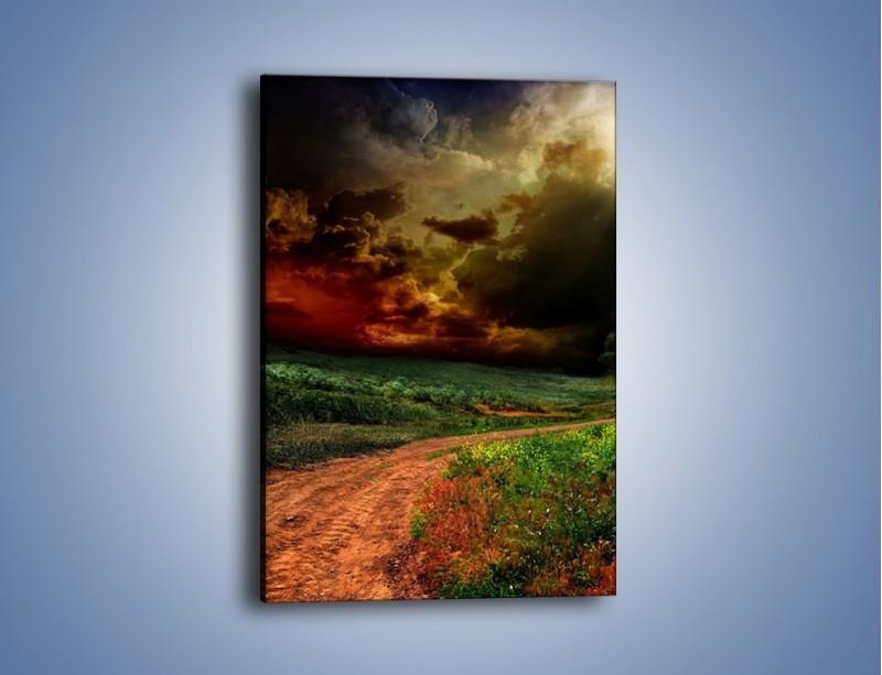 Obraz na płótnie – Groźne chmury nad łąką – jednoczęściowy prostokątny pionowy KN476