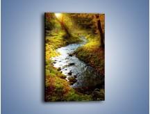 Obraz na płótnie – Leśny potoczek – jednoczęściowy prostokątny pionowy KN492