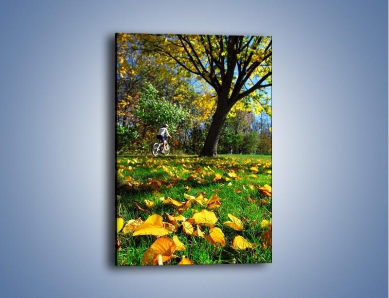 Obraz na płótnie – Lecą liście z drzew – jednoczęściowy prostokątny pionowy KN498