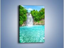 Obraz na płótnie – Kwiat woda i wodospad – jednoczęściowy prostokątny pionowy KN520