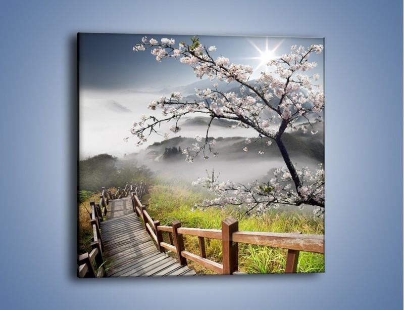 Obraz na płótnie – Drzewo wiśni i kręte schody – jednoczęściowy kwadratowy KN698