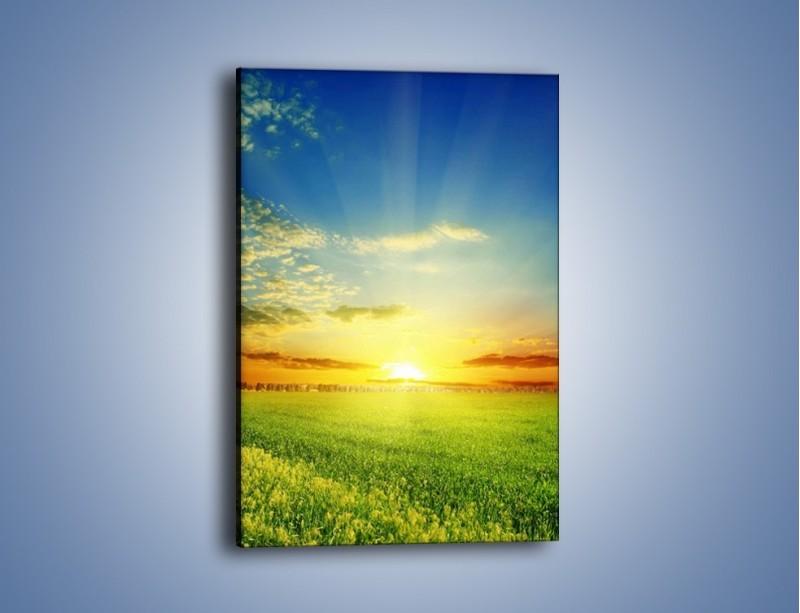 Obraz na płótnie – Łąka pełna zieleni – jednoczęściowy prostokątny pionowy KN542