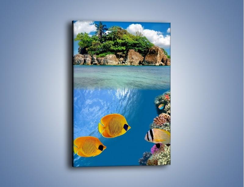 Obraz na płótnie – Podwodny świat na wyspie – jednoczęściowy prostokątny pionowy KN586