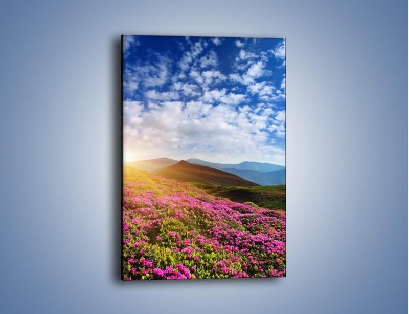 Obraz na płótnie – Lawendy w górach – jednoczęściowy prostokątny pionowy KN592