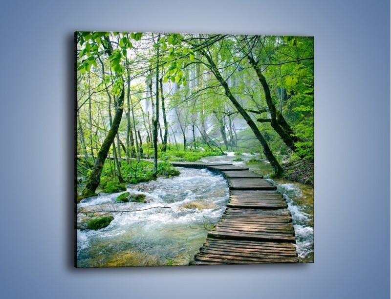 Obraz na płótnie – Drewniana kładką przez potok – jednoczęściowy kwadratowy KN720