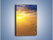 Obraz na płótnie – Leniwym krokiem w stronę słońca – jednoczęściowy prostokątny pionowy KN843